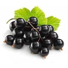 Blackcurrant (Смородина черная)